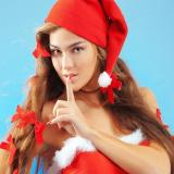 Santa Beauty Jigsaw Puzzle